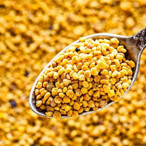 Mellifera Bee Pollen 125 Gram